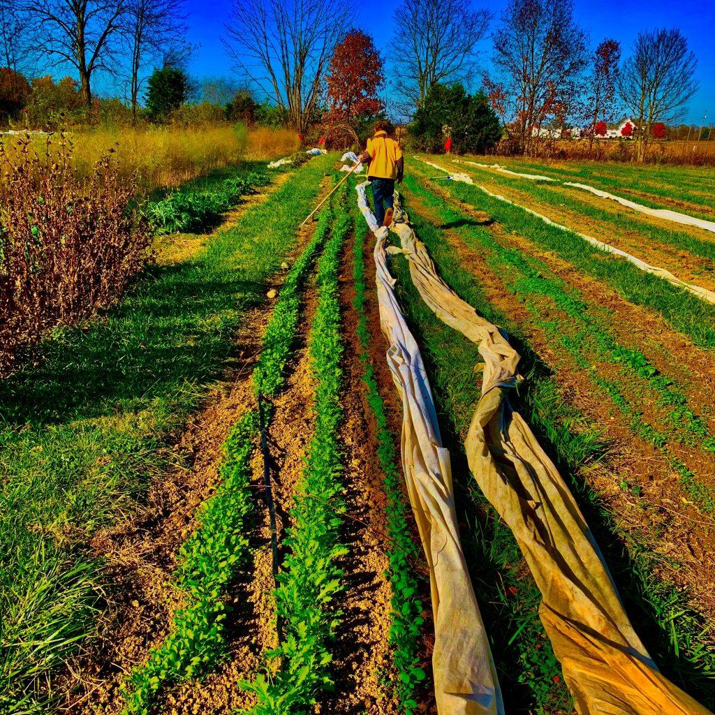 farm tours season extension CSA